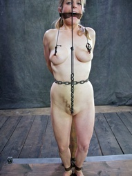 Blondes in Bondage, pic #2