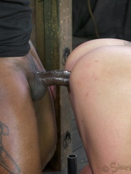MILF Gets A Big Black Cock, pic #9