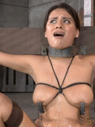 Selma Sins drilled down by two cocks, pic #4
